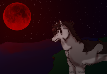 Blood Moon - Sean TWolf Re-design by seanhayes