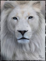 White lion by EtskuniArt