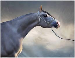 (MT Tiger) Majestic stallion by EtskuniArt