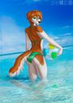 [C] Aquamarine holidays