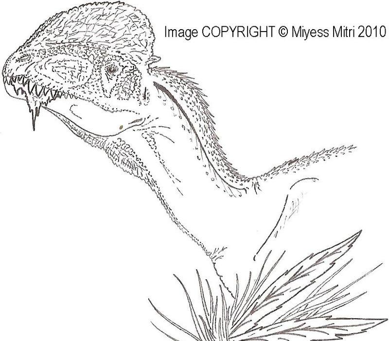 Dilophosaurus dinosaur coloring pages sketch coloring page for Dilophosaurus coloring page