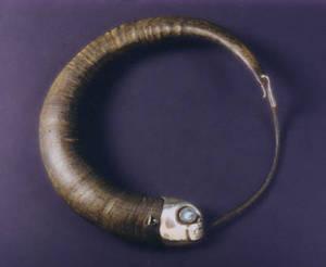 horn necklet