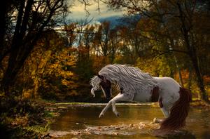 Running in an Autumn Dream by CreativeChaosStudios