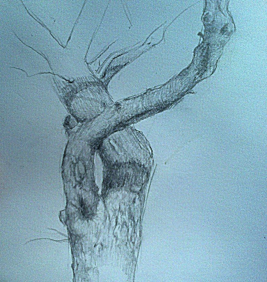 Scar Study Fragm by Cancernick ...