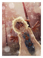 + Winter Wonderland +