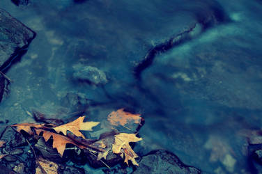 Autumn Is Washed Away by beyondimpression