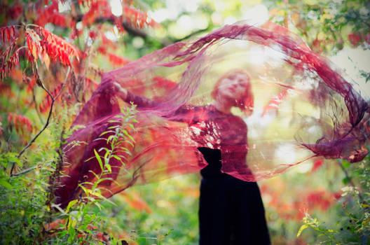 Autumn Portal by beyondimpression