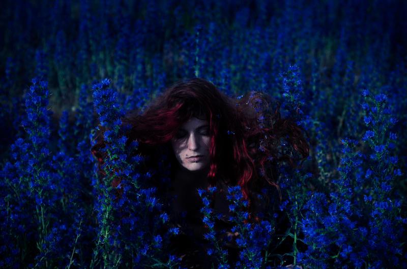 Wild Flower by beyondimpression