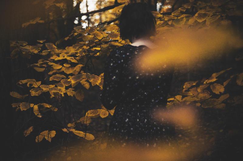 Silent Autumn by beyondimpression