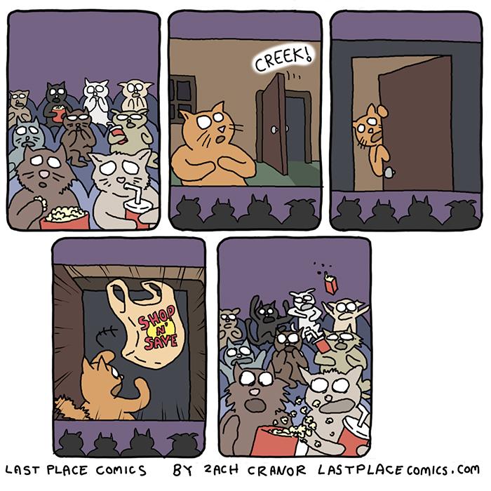 Cat Horror by Exzachly