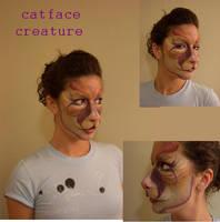 cat face by emflem