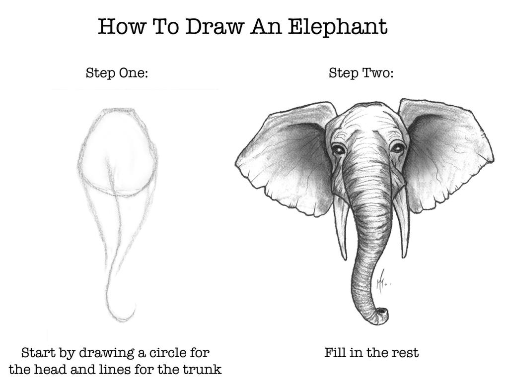 How To Draw An Elephant by SumtimesIplaytheFool on DeviantArt
