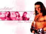 Shawn Michaels- HBK