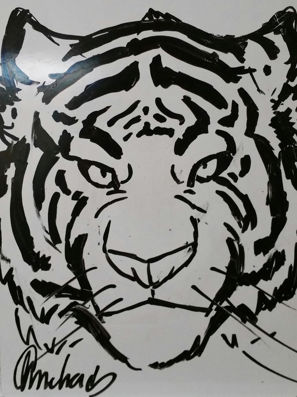 1 min Tiger by Gebafado