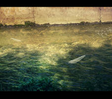 Water by LeksaArt