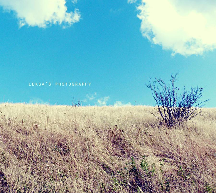 B.A.Y. by LeksaArt
