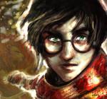 harry potter I