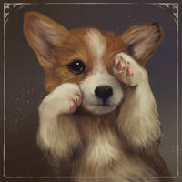 corgi puppy by LeksaArt