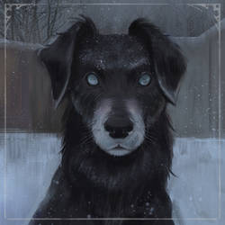 the dog of Hecate