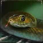 Slytherin snake by LeksaArt