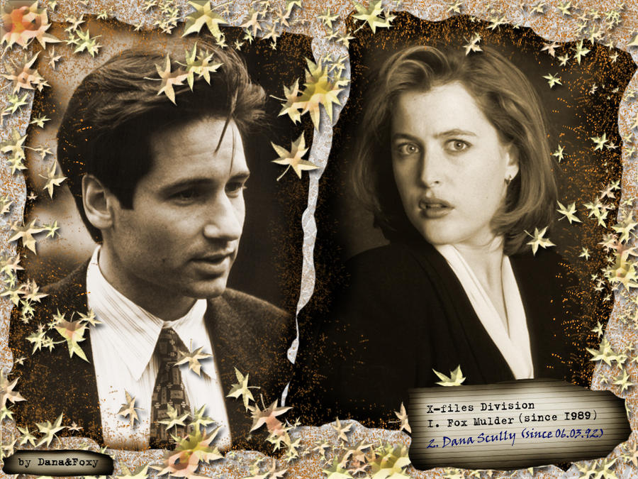 Mulder Scully's 1st meeting10