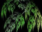Fractal Willow by DanaAnderson