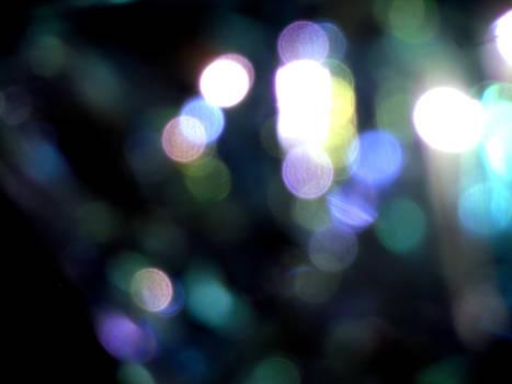 The Shimmering Lights