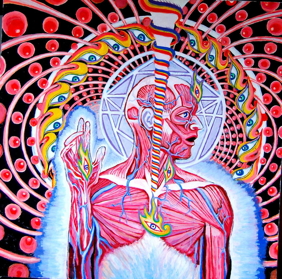 Lateralus by mu... Alex Grey Tool Album