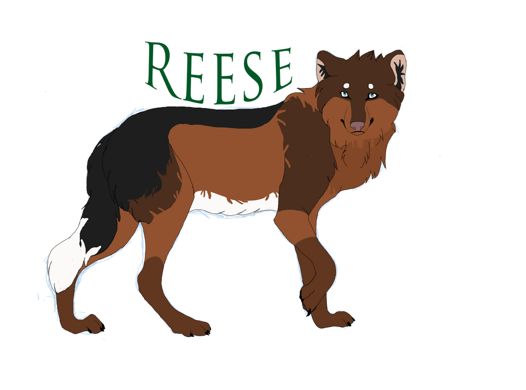 Reese by aliwolf12