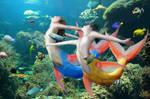 Pretty Fish 2 by stillarebel