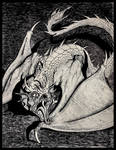 Untitled Dragon 1