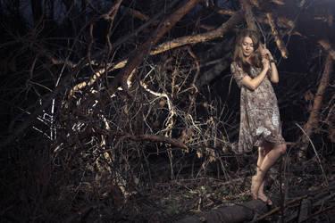 Fairytale by BrightNightWind