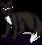 Ravenpaw Pixel | Warriors | F2U by ScorcherSoldier