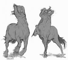 Some Sketchy Centaurs by CallMeSiv