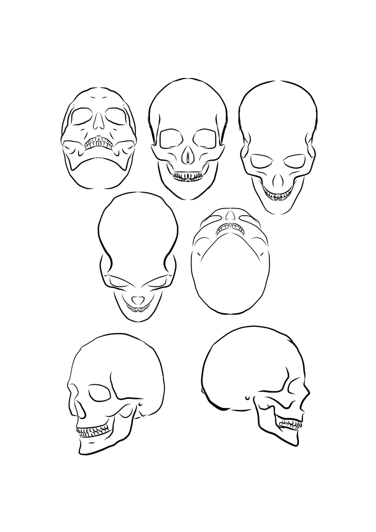 worksheet Angle Drawing skull angle by pharion on deviantart pharion