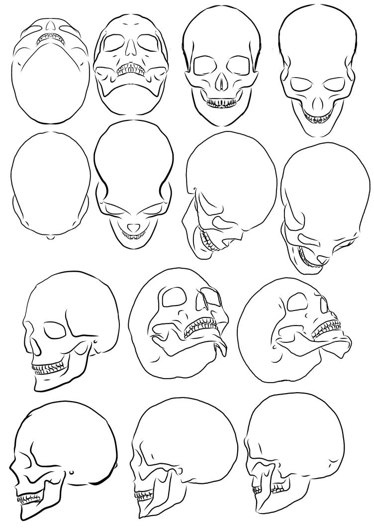 Line Art Design Tutorial : Skull study by pharion on deviantart