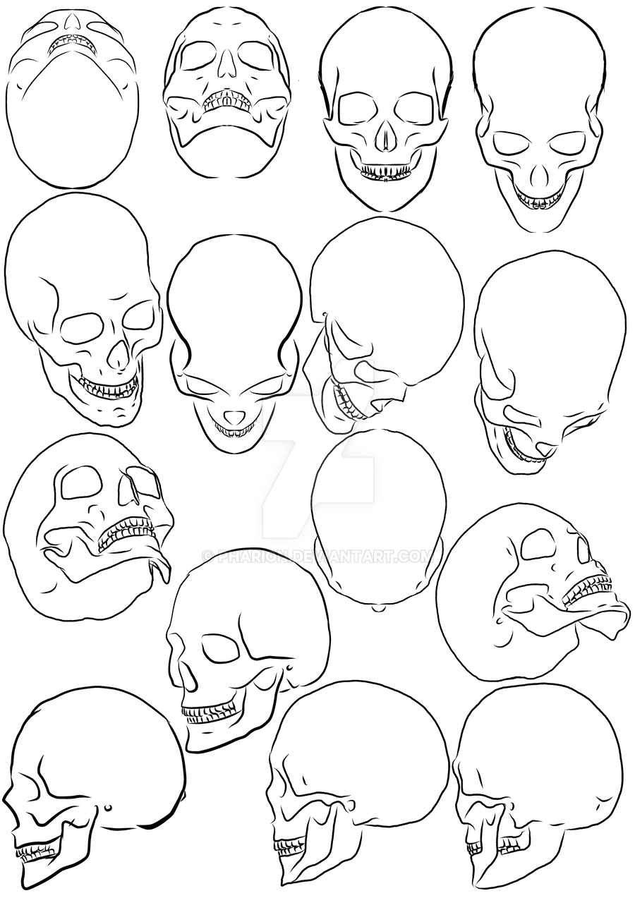 worksheet Angle Drawing skull angle 2 by pharion on deviantart pharion