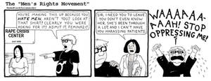 The Men's Rights Movement in a Nutshell