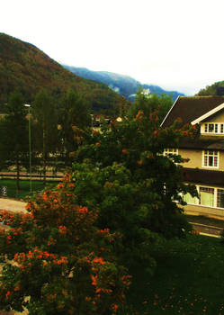 Lovely Autumn View from my Hotel at Otta by ToveAnita