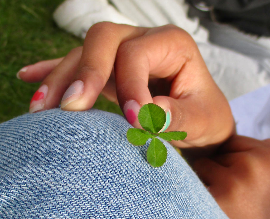 Four-leaved Clover!