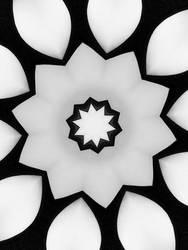 Kaleidoscope by snoogaloo