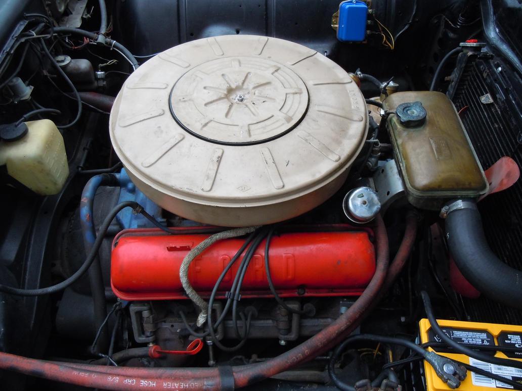 Thunderbird v8 forex ea