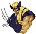 Wolverine SKETCH COLORED 2012