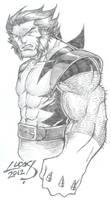 Wolverine SKETCH 2012