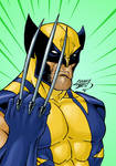 Wolverine COLORED 2015