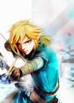 Link _The Legend of Zelda Breath of the Wild