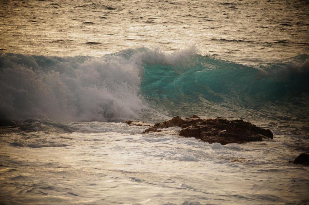 Blue Wave by BlueTheWolf111