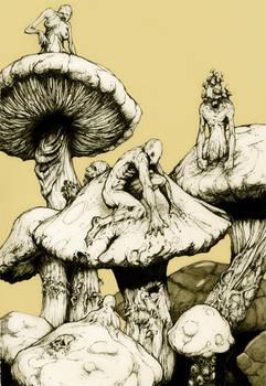 fungus people