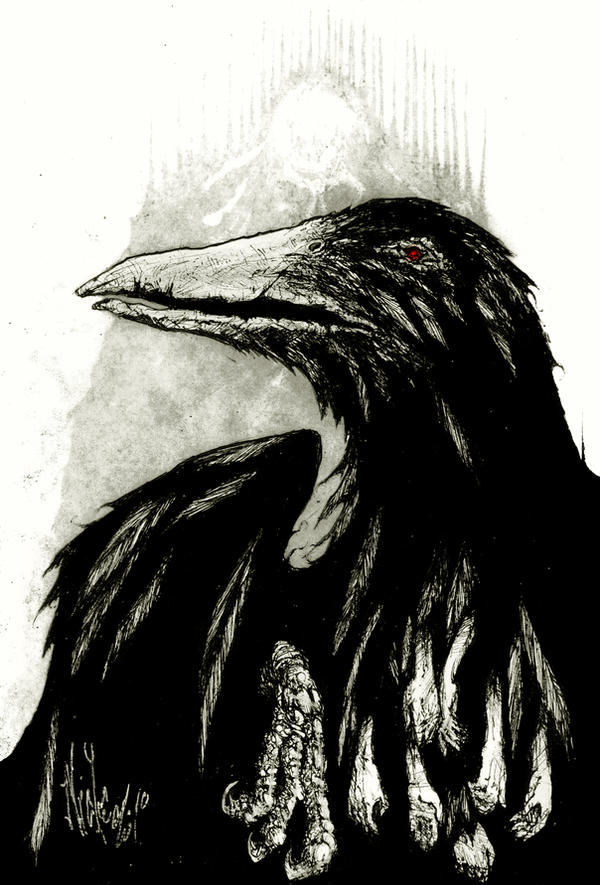 black bird by nicktheartisticfreak