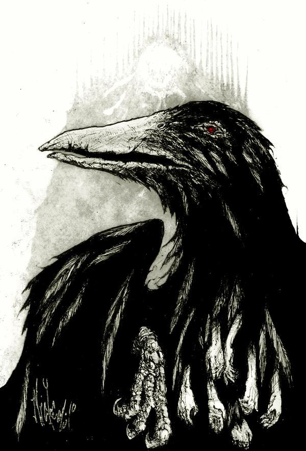 black bird by nicktheartisticfreak